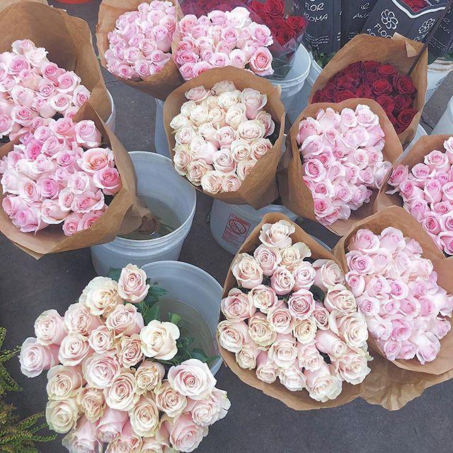 Perfectly pink roses 😍 #illtakethemall
