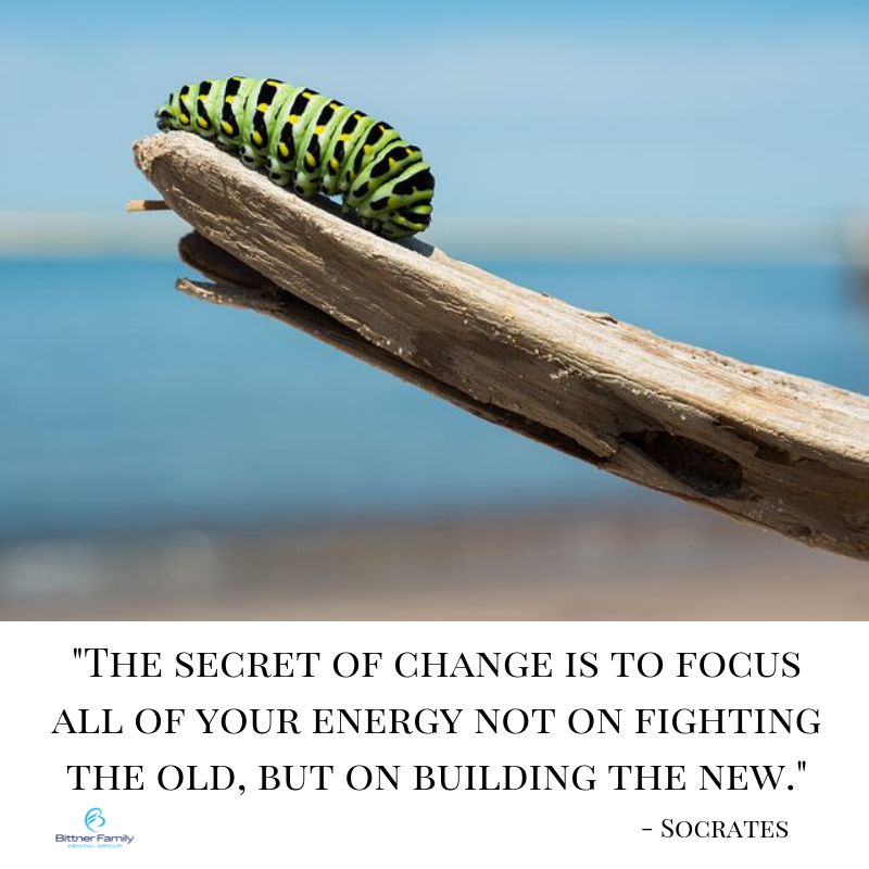 Focus on the New