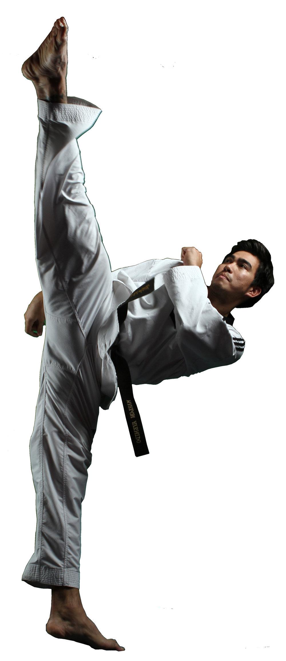 Master Marlon Roundhouse Kick.jpg