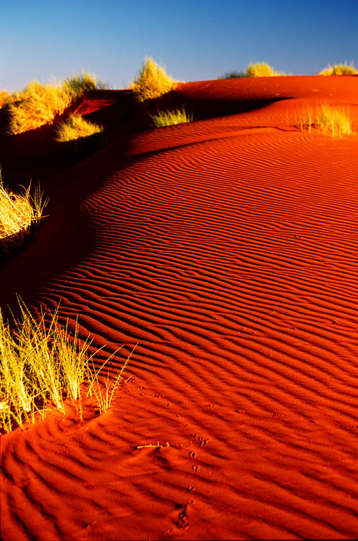 Petrified Dunes - Namibia