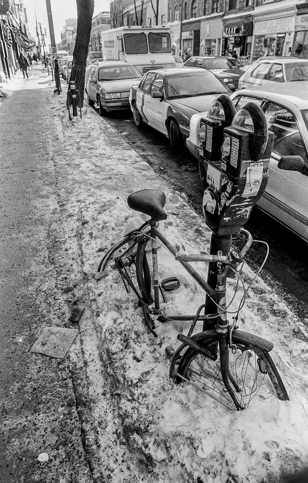 bicycle--3A.JPG