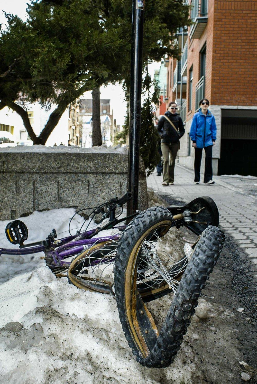 bicycle-1623.JPG