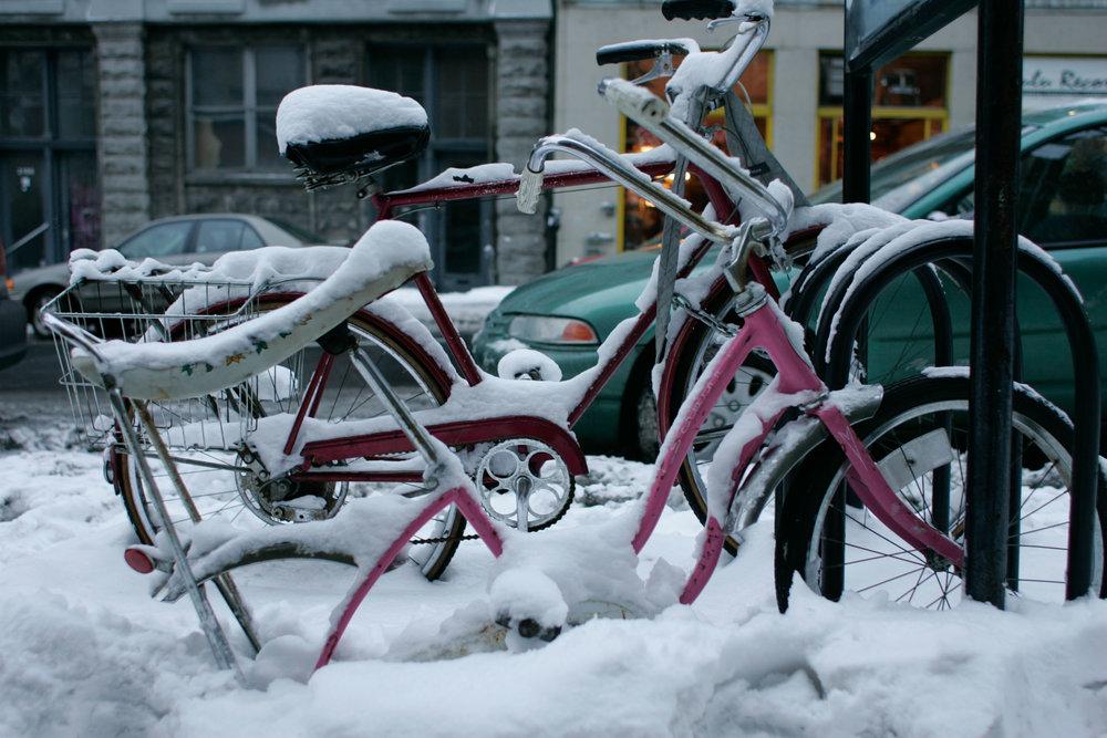 bicycle-1648.jpg