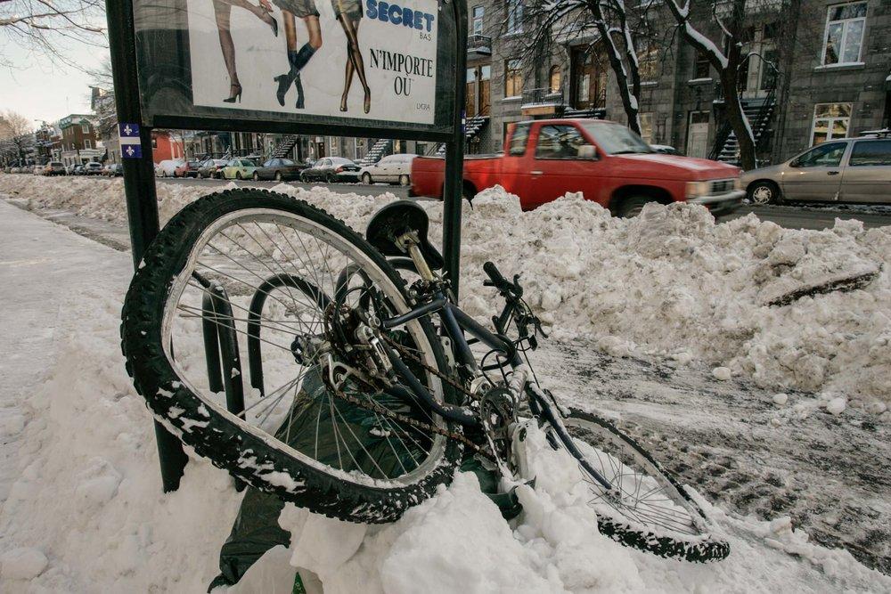 bicycle-1714.jpg