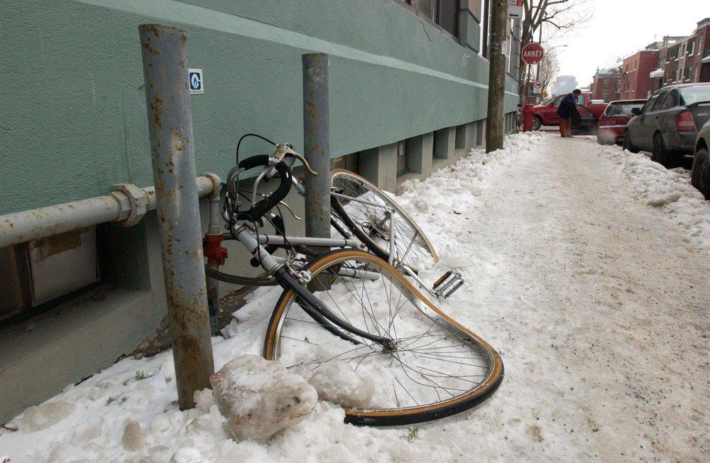 bicycle-5509.jpg