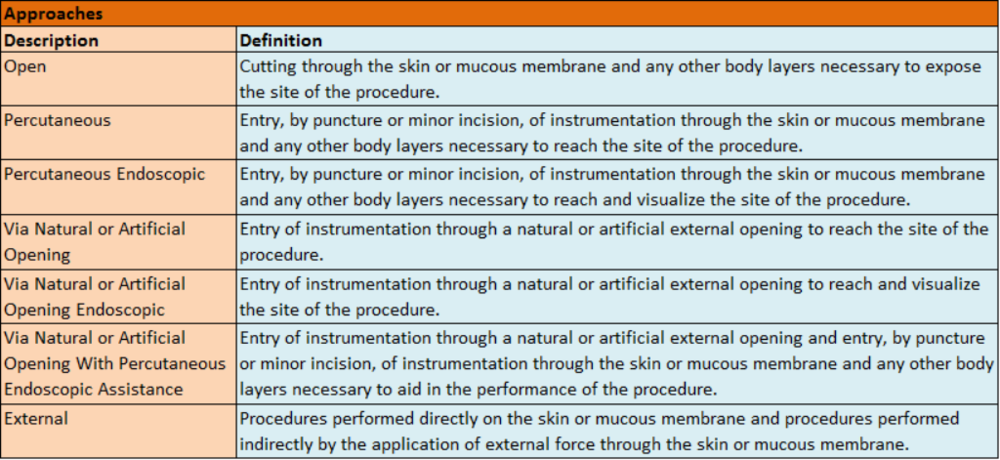 Understanding ICD-10-PCS_clip_image022.png