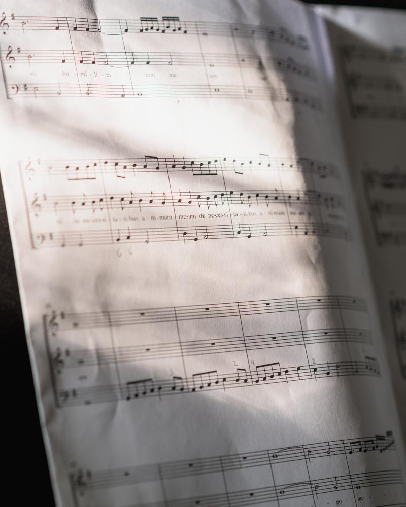 eigene Lieder Songs schreiben lernen Basel, Songwriting