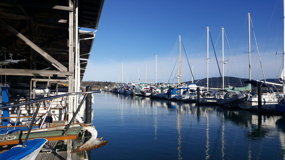 2017 Project at Anchor Cove Marina, Anacortes