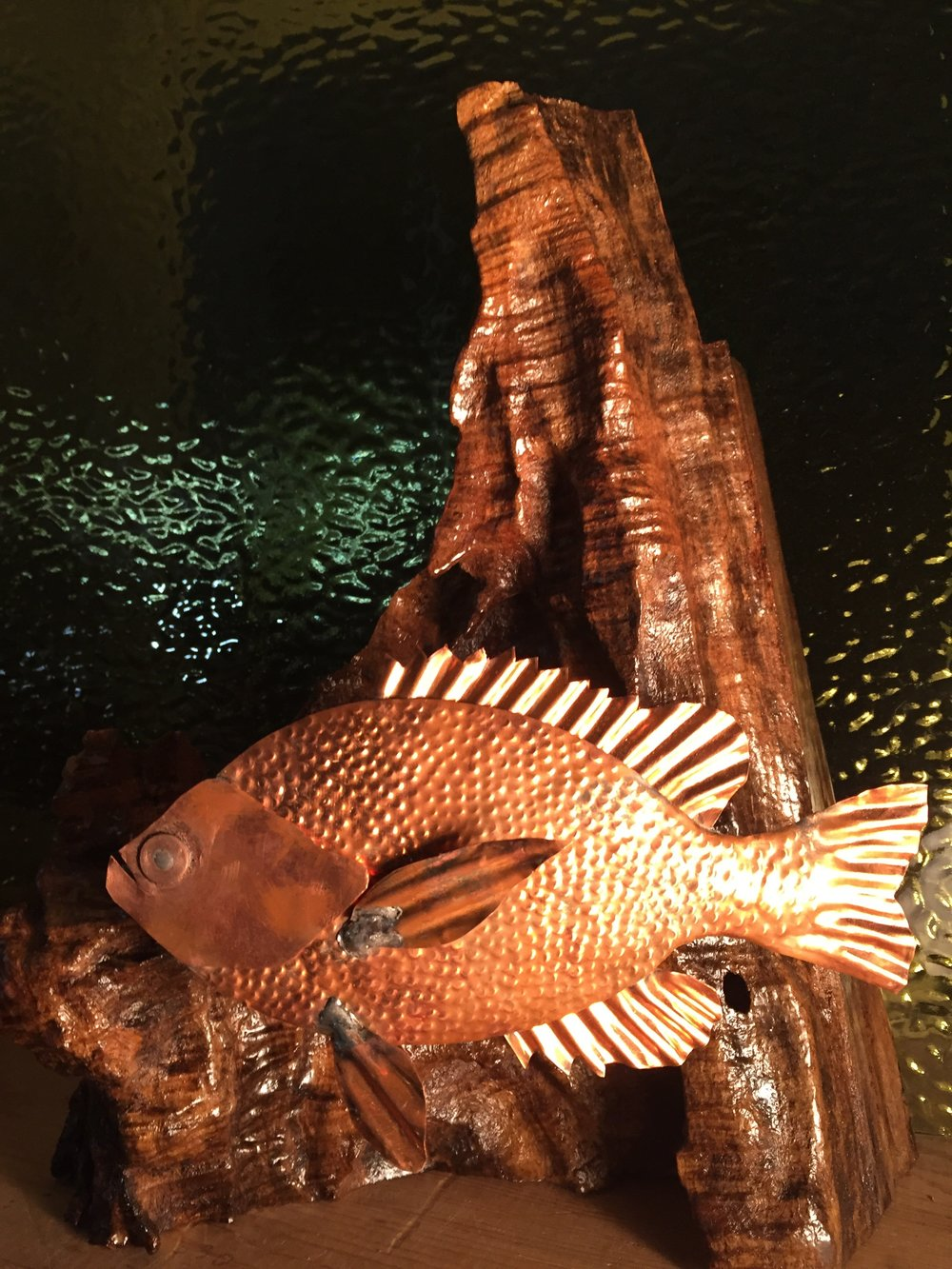 Copper Sunfish