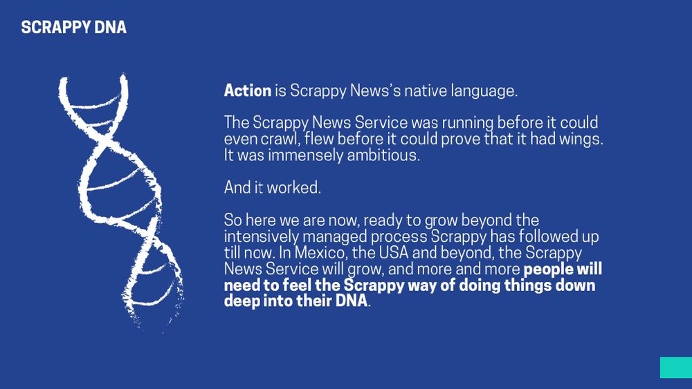 Scrappy News_Creative Development_Page_01.png