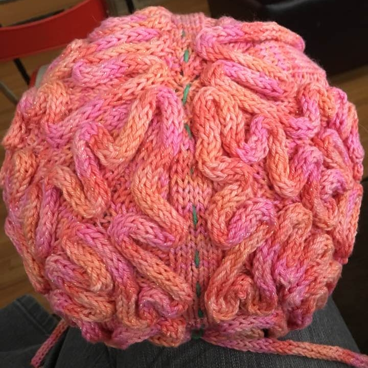 Here is the brain hat that Trish knit up for a friend.
