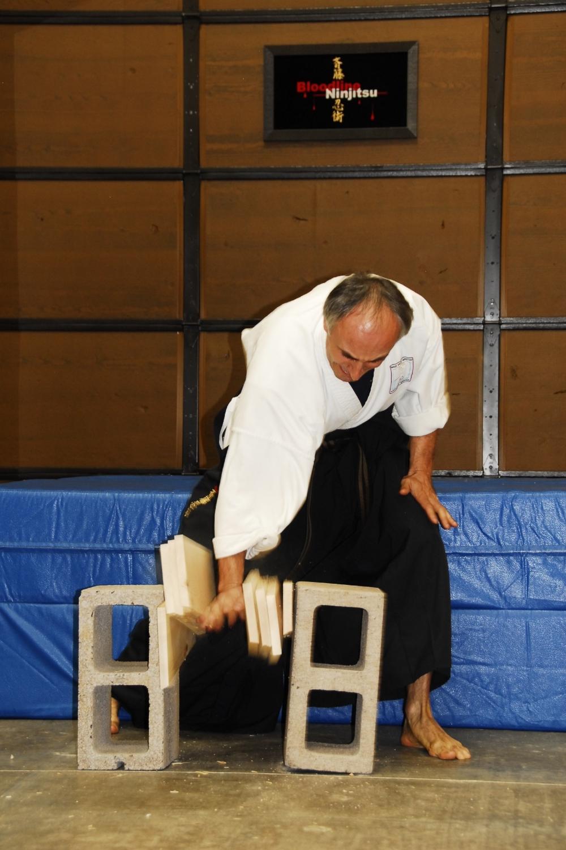 Scottsdale Martial Arts, Karate, Jujitsu, Ninjitsu, MMA (35).JPG