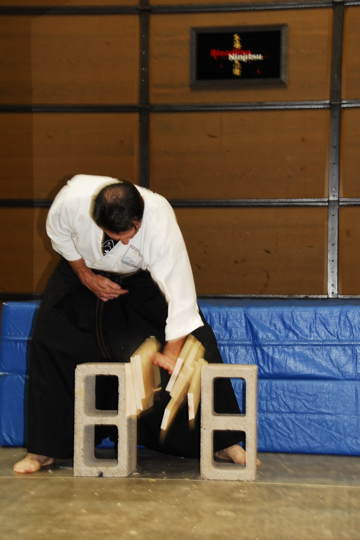 Scottsdale Martial Arts, Karate, Jujitsu, Ninjitsu, MMA (15).JPG