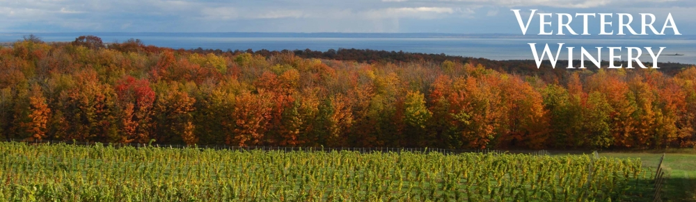 We also went here in Leland, MI and loved it. (photo from verterra winery webite (linked).