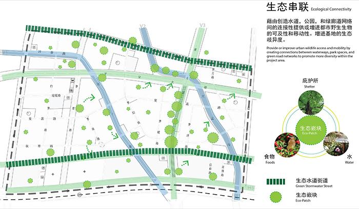 zhengzhou3.jpg