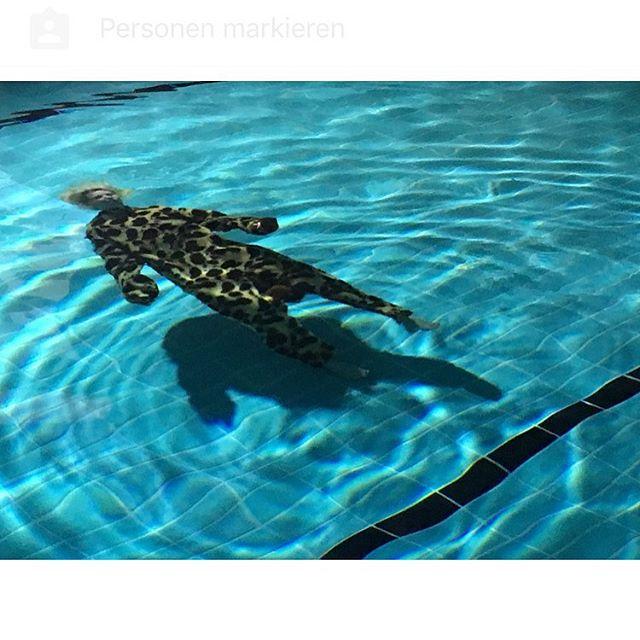 #sinking #giraffe #lastnight #musicvideo