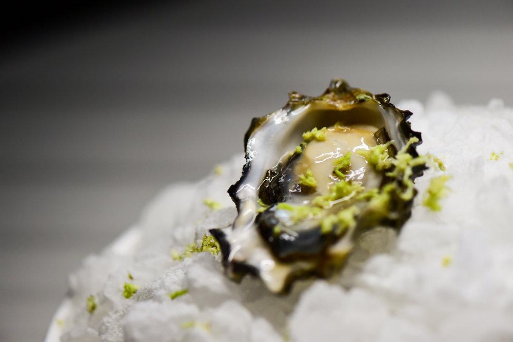oyster & wasabi.jpg