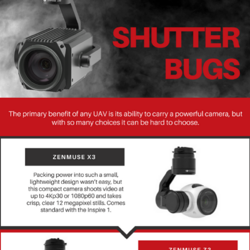 Shutter Bugs Icon.png