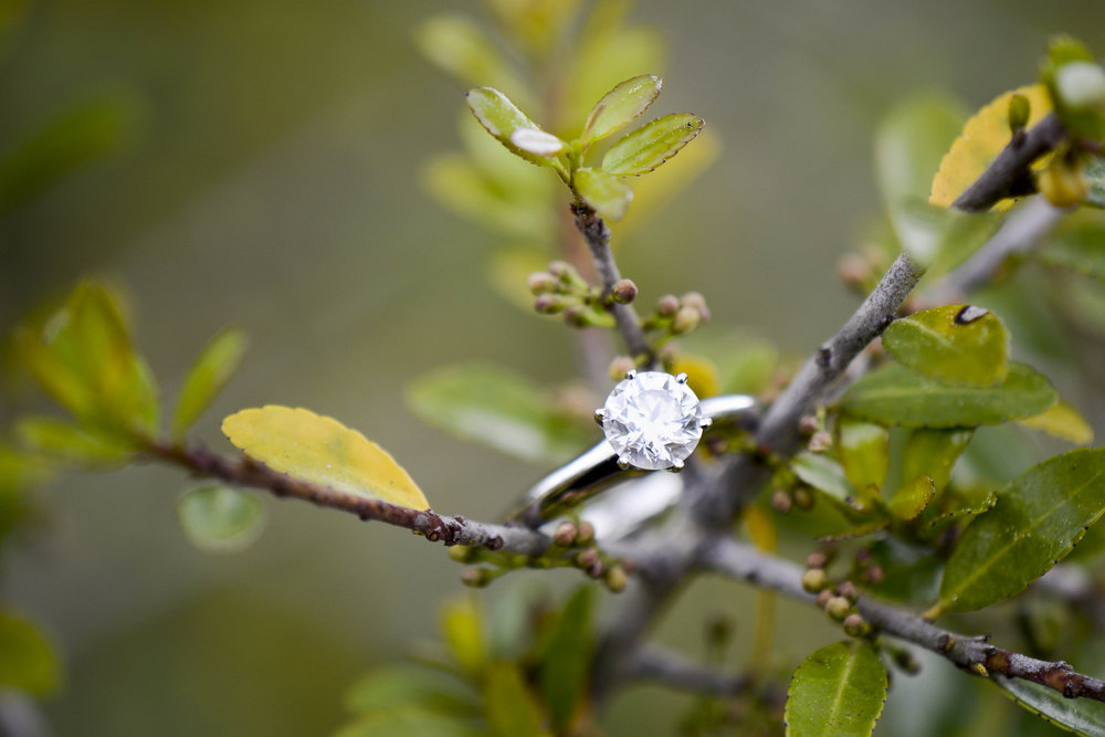 Charleston Engagement Ring Session