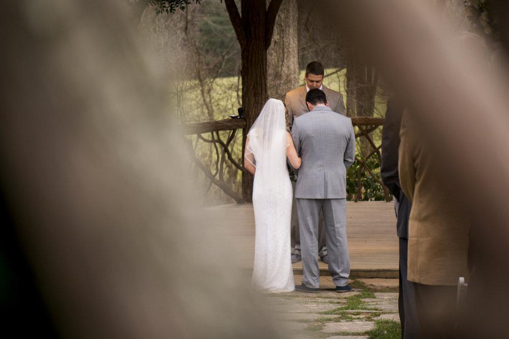 Ashville Wedding-15.jpg