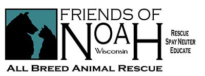 Friends of Noah