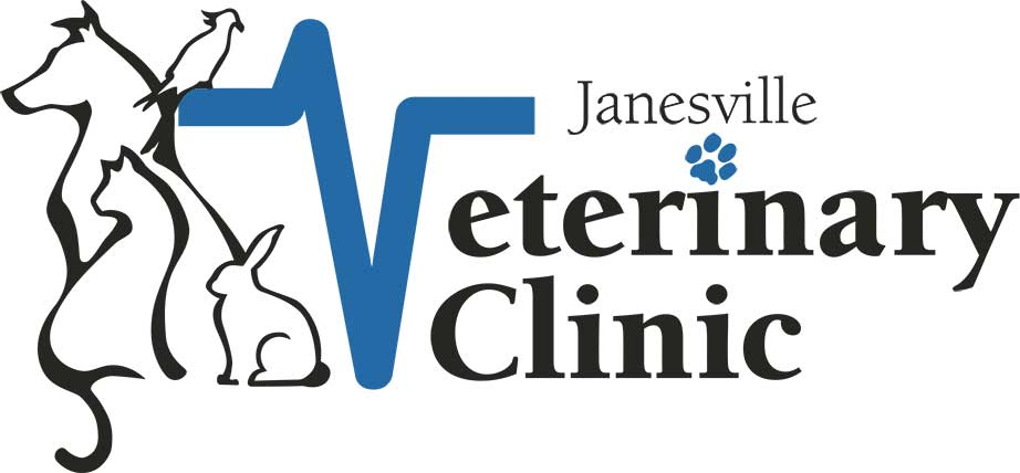 JVC-logo_web.jpg