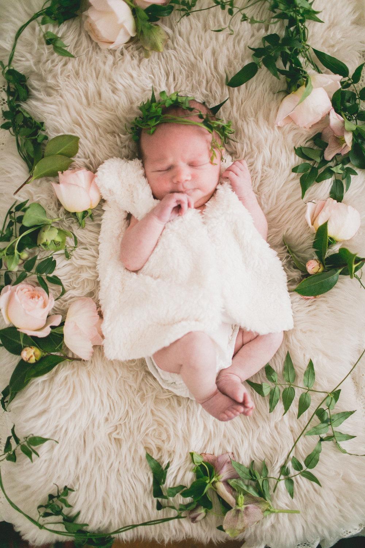 tessie_newborn_020