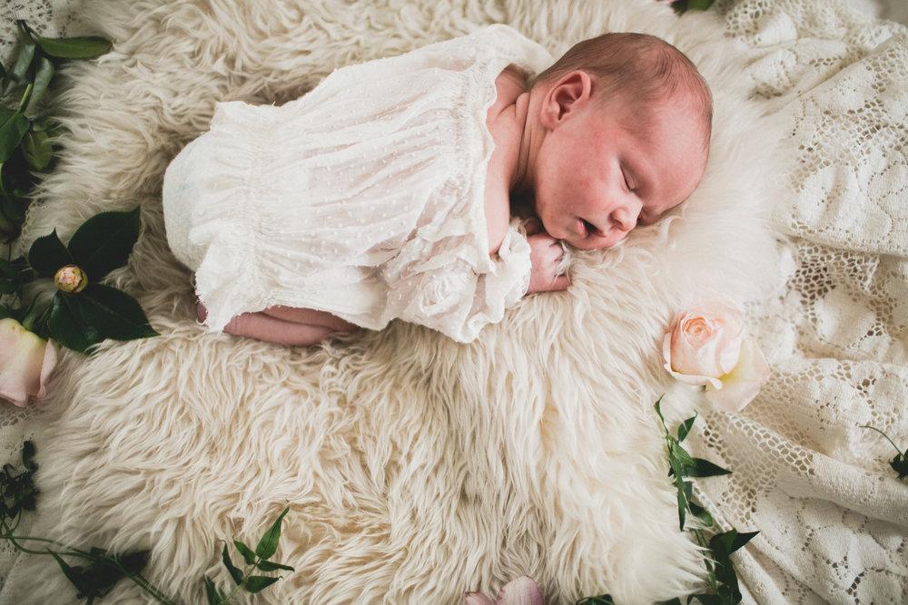 tessie_newborn_028