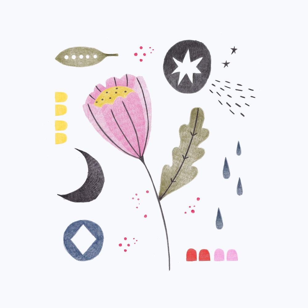 Illustration - Mystic Flower.jpg