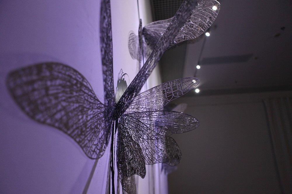 郑路,蜉蝣,不锈钢 墨水,可变尺寸,2010 4.jpg