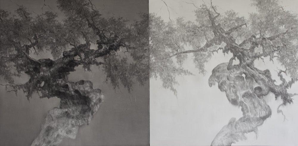 23- 58w 古树系列19号 2017    Old Tree Series No.19_2017   150cm x 150cm (x2).jpg