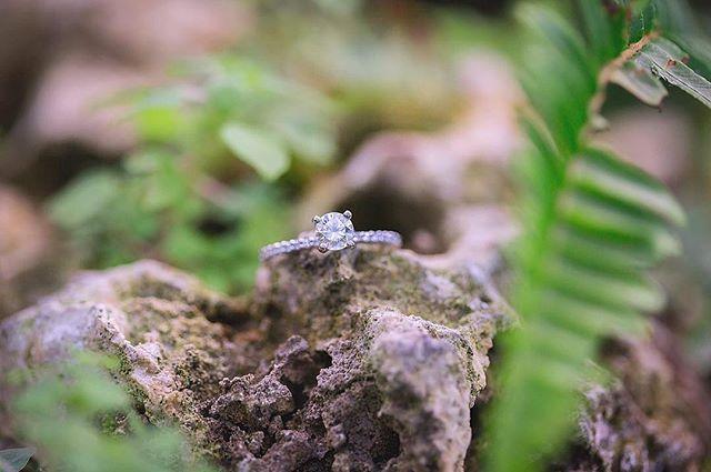 {Saturday Sparkle} #becomingbellissimo #engagementring #bling #girlslovediamonds #weddingphotographer #engagementphotographer #agirlsbestfriend #saturdaysparkle #weddingdetails