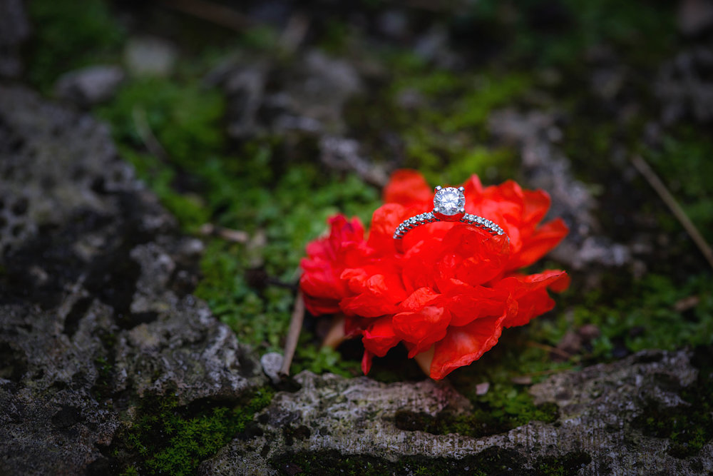engagement_ring_princess_cut.jpg