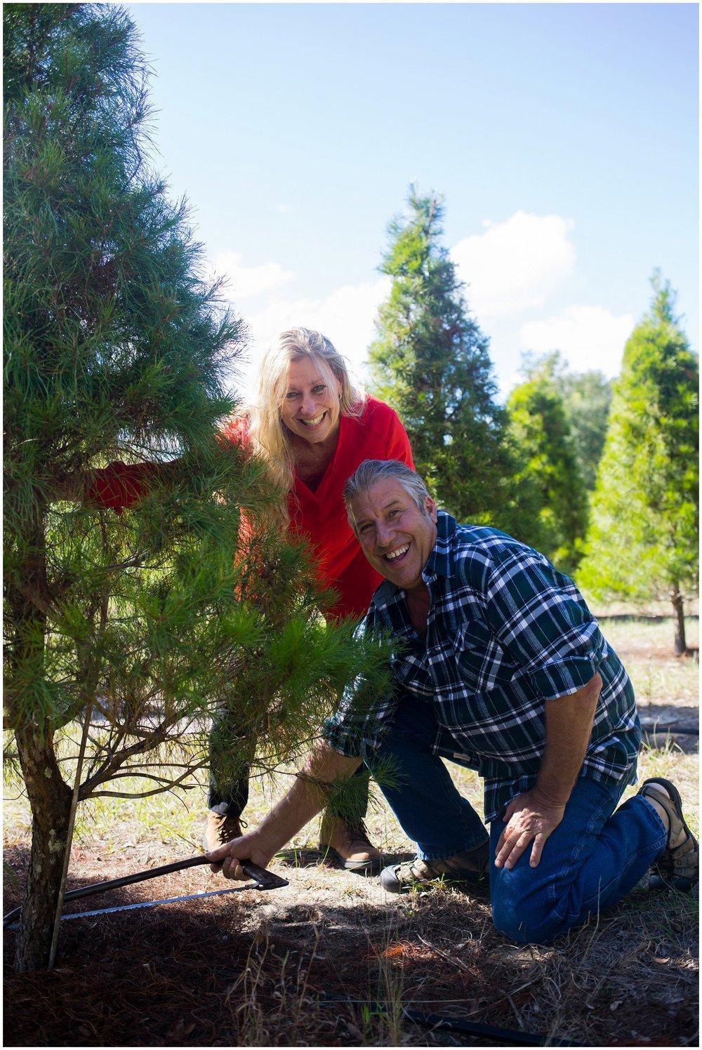 Eustis-Christmas-tree-farm-photographer.jpg