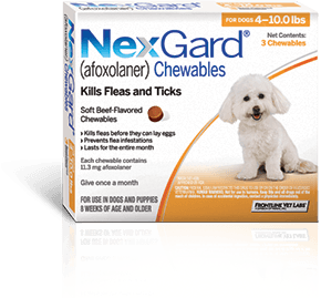 """Tasty Bite-Sized Flea & Tick Control.""  NexGard® (Afoxolaner) Protection for Your Dog , nexgardfordogs.com/pages/about.aspx."