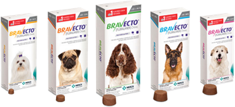"""Bravecto Chew for Dogs.""  Merck Animal Health USA , www.merck-animal-health-usa.com/bravecto/chew-for-dogs."