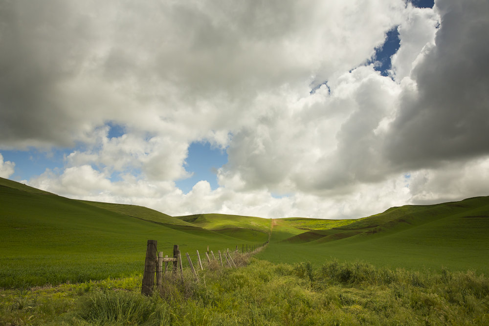 Landscapes_Palouse, WA_02