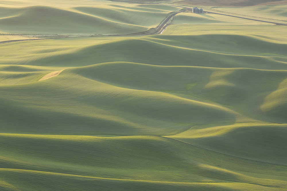 Landscapes_Palouse, WA_04