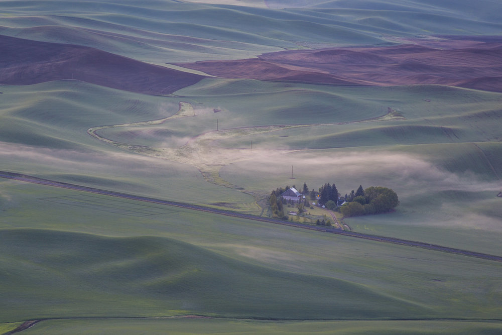 Landscapes_Palouse, WA_03