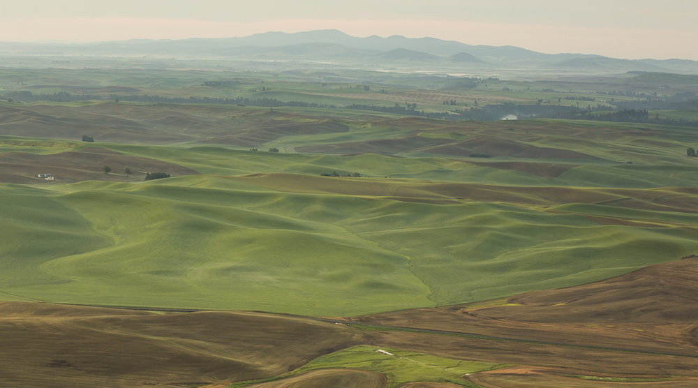 Landscapes_Palouse, WA_07