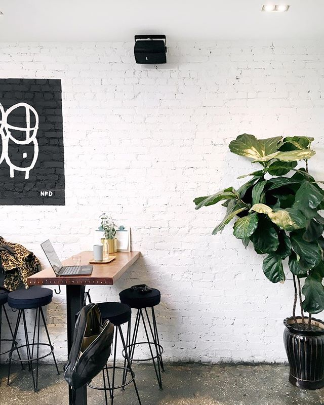 Work is better with ☕️ + 🌿 . . . . . #supercrowncoffeeroasters #supercrowncoffee #supercrown #super👑☕️ #☕️ #coffeeroaster #drinkbettercoffee #specialtycoffee #bushwick #bushwickcoffee  #brooklyn #brooklyncoffee #brooklyncafe #cafe #plants #succulents