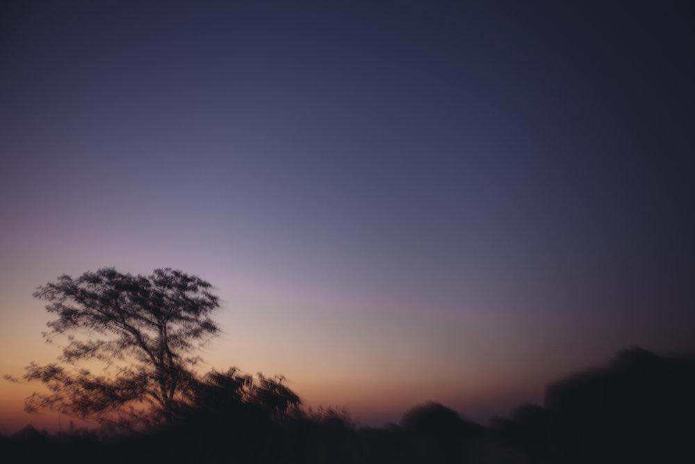 Zambia 20.jpg