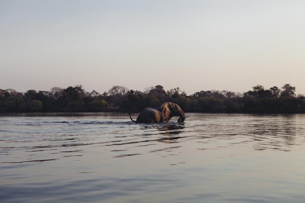 Zambia 38.jpg