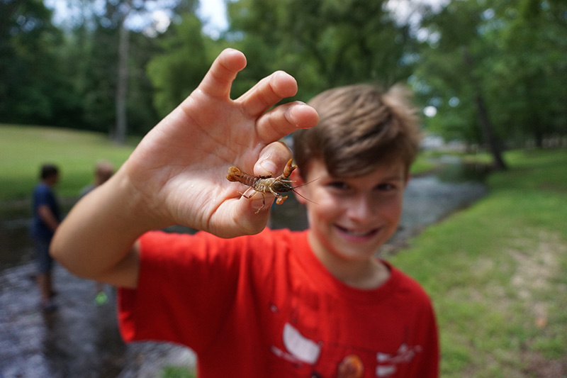 Young teenage boy holding an insect up to the camera - NaCoMe Camp & Conference Center
