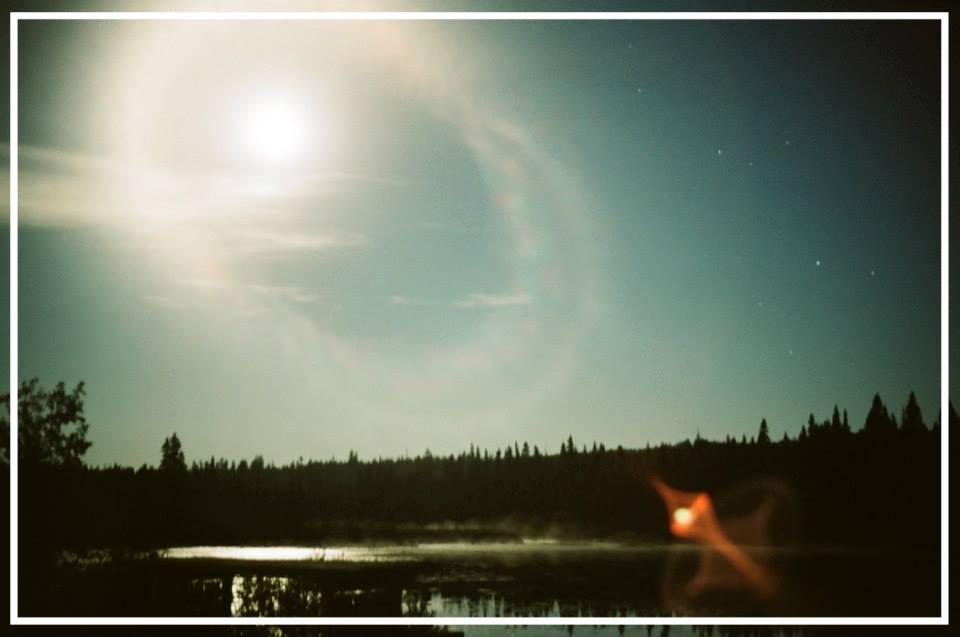 Moon bean.jpg