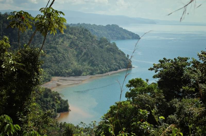 Corcovado National Park Costa Rica | Prince of Travel | Travel Talk