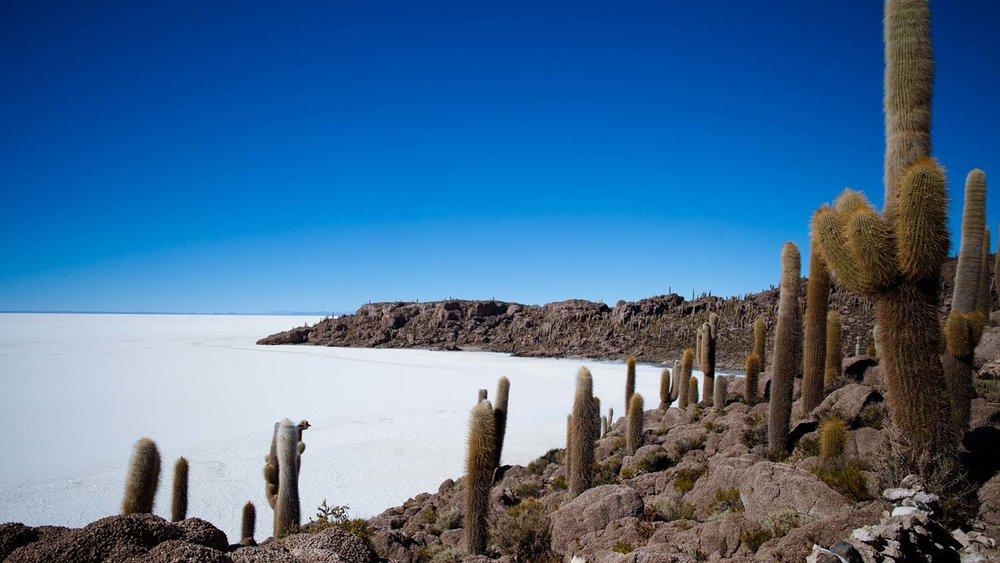 Salar de Uyuni – Isla Incahuasi