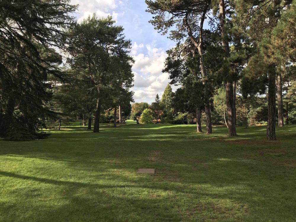 Kew Gardens – Cedar Vista