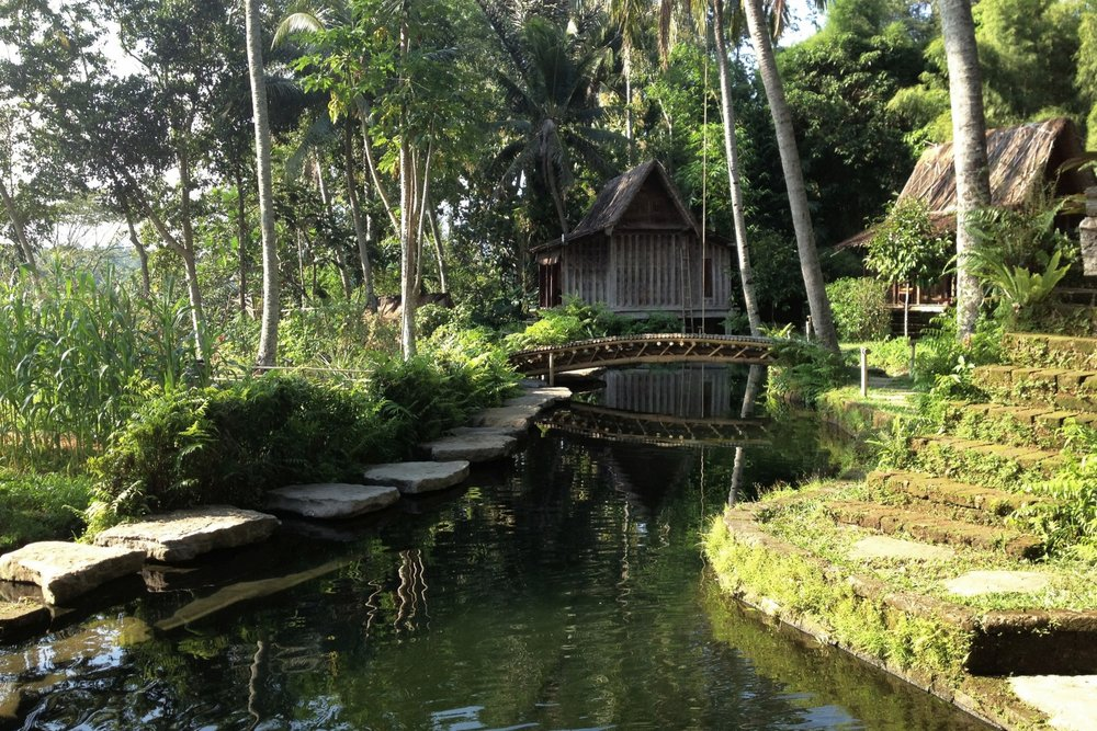 Bambu Indah Ubud – Natural pool