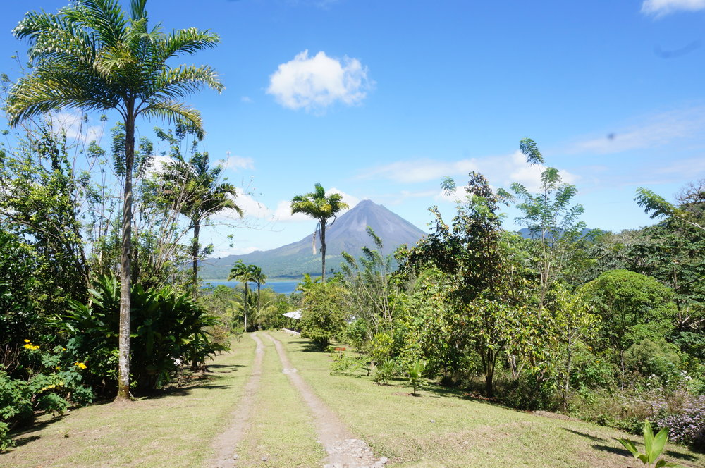 View of Arenal Volcano from the farm
